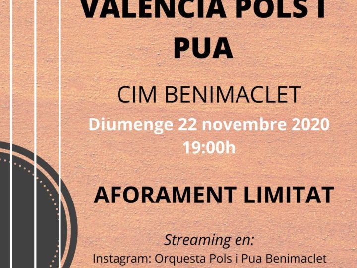 Concert de Santa Cecília de la Orquestra València de Pols i Pua del CIM de Benimaclet, diumenge 22 de novembre de 2020, 19.00 h.